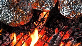 Luonto-Suomen nokikokit valmistavat ruokaa nuotiolla