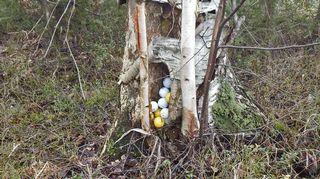 Piilotetut golfpallot