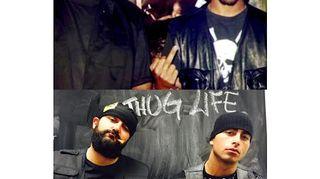 Thuglife! Vapaaottelija Makwan Amirkhani ja Ali Jahangiri