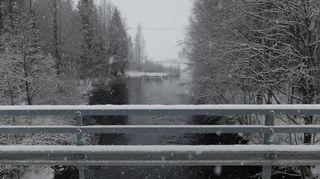 kuomanjoki