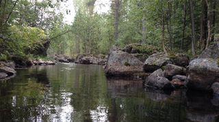 Kuvassa järvimaisema Puumalasta.
