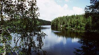 Järvimaisema. Kuva: Arja Lento/YLE.