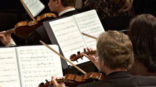 Orkesteri soittaa, viulisteja. Kuva: Yle