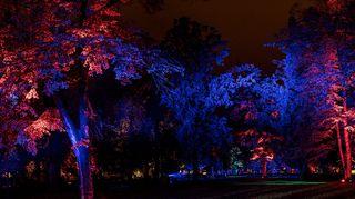Valotaiteilija Kari Kolan teos Magical Garden Prahassa