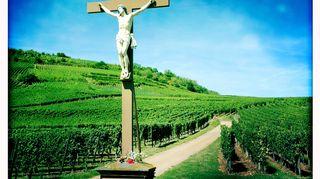 Jeesus, viini ja tietokirjat