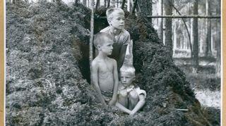 Noin 6-vuotias Juha Hänninen on rakentanut majan metsään Korhosen veljesten kanssa