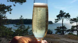 Bjurströmin suvulla on ollut 1940-luvulta alkaen kesäpaikka saaristossa
