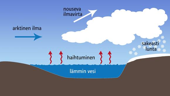 Säägrafiikka: Kaaviokuva kylmän ilmamassan ja lämpimän meriveden vuorovaikutuksesta syntyvistä voimakkaista lumikuuroista.