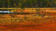 Sääkuva: Ruskaa Kemijärvellä