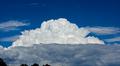 Kuvassa on kehittyvä sadekuuropilvi. Taustalla kirkas sininen taivas.