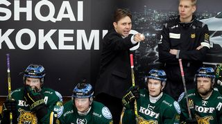 Tuomas Tuokkola, Ilves-luotsi 24.10.2014