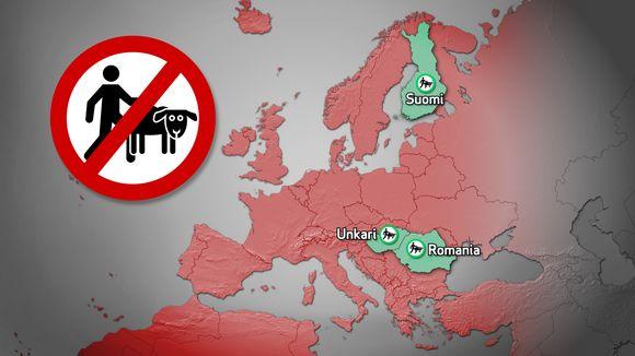 Suomen lisäksi Unkari ja Romania ovat ainoat EU-maat, joissa eläinseksi ei ole laissa kielletty.