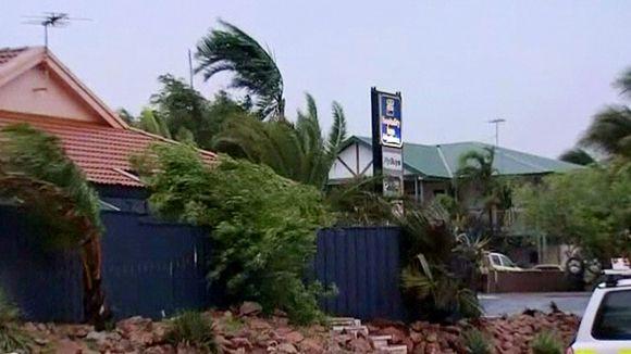 Tuulen taivuttamia palmuja.