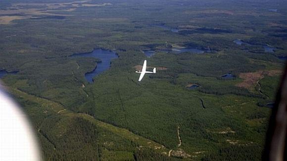 Purjelentokone liitelee metsien yllä.