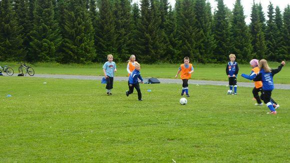 Lapset pelaavat jalkapalloa ruohokentällä.