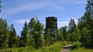 Kiljamon lintutorni Torronsuon kansallispuistossa
