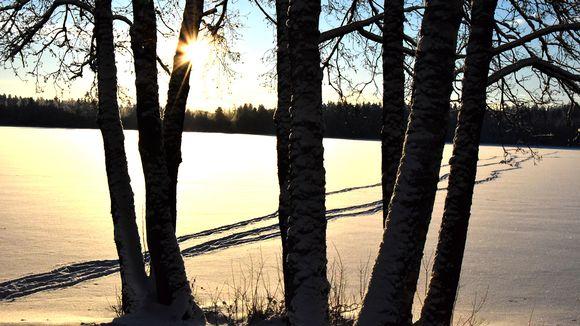 Talvinen maisema auringonpaisteessa