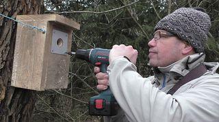 Mies ruuvaa suojapeltiä kiinni linnunpöntön suuaukkoon