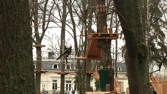 Miehiä kiipeilee puissa olevissa telineissä.