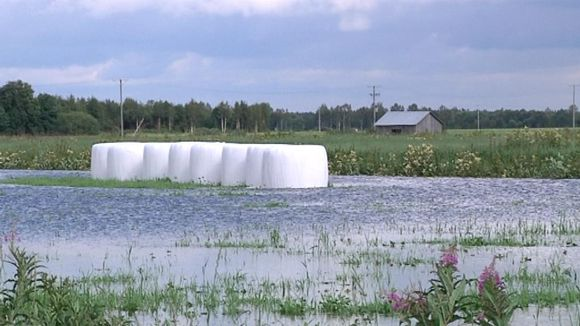 Flooded fields at Siikalatva.