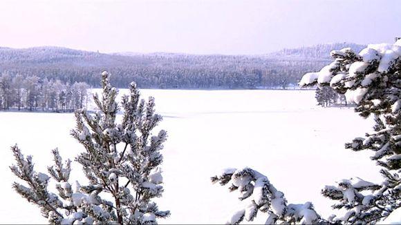 Talvimaisema järvelle.