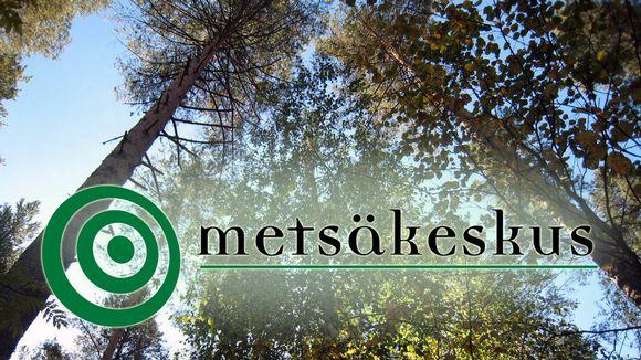 Metsäkeskuksen logo, metsä.