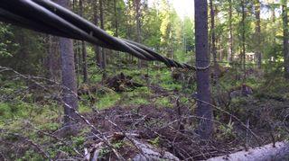 Katkennutta sähkökaapelia Jyväskylän Laajavuoressa.