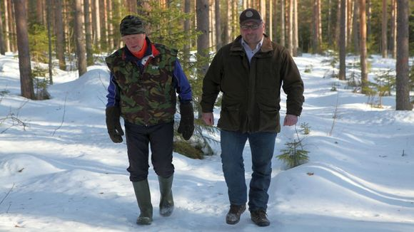 Vilho Pollari ja Toni Hirvonen peräänkuuluttavat parempaa tiedottamista EU:n metsoprojetissa.