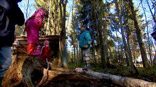 Eskarin elementtejä ovat aidot puut, metsäpolut ja monimuotoiset kivet.