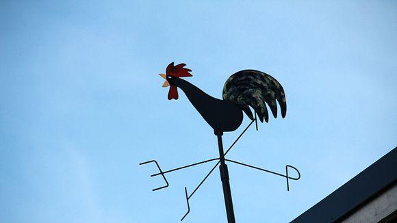 Kuvassa katolla oleva tuuliviiri.