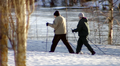 Pariskunta sauvakävelee lumisessa maisemassa.