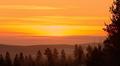 Tunturimaisema, havumetsää auringonlaskussa Inarissa.