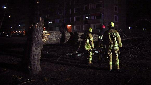 Palomiehet raivaavat Eino-myrskyn kaatamia puita Vaasassa.