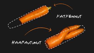 Liian ruma porkkanaksi -grafiikka.