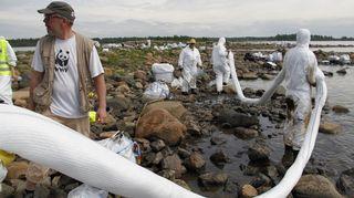 Öljyn imeytykseen käytettävää puomia levitetään rannalle.