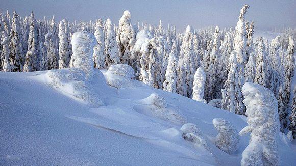Lumimaisema Tahkovaaralta.