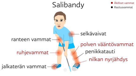 Salibandy: äkilliset vammat: nilkan nyrjähdys, ruhjevammat ja polven vääntövammat. rasitusvammat: penikkatauti, jalkaterän vammat , selkävaivat ja ranteen vammat
