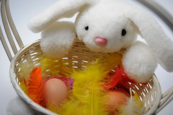 Kananmunat pääsiäinen.
