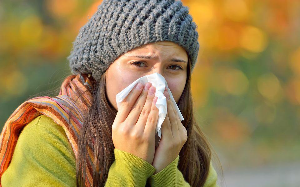 Leppä Allergia