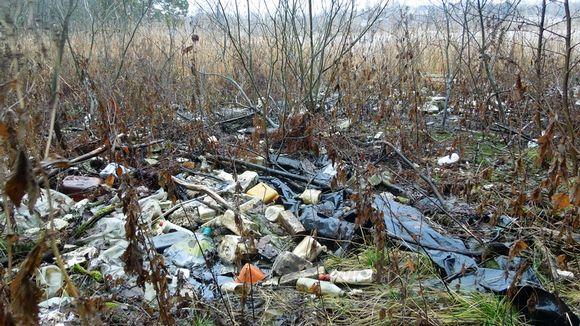 Muovipurkkeja ja muuta roskaa rannalla.