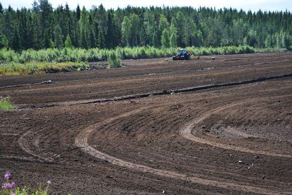 Loukkusaarenneva Perhossa jää hyödyntämättä | Yle Uutiset | yle.fi