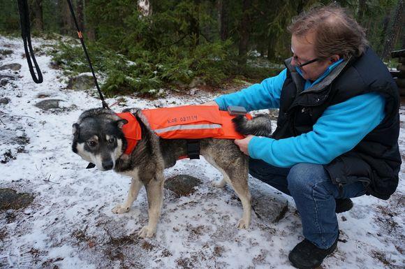 Jussi Aro ja Minka-koira