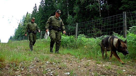 Rajavartioston koirapartio tarkastaa rajaa.