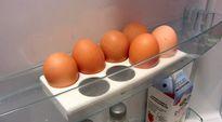 Kananmunia jääkaappitelineessä