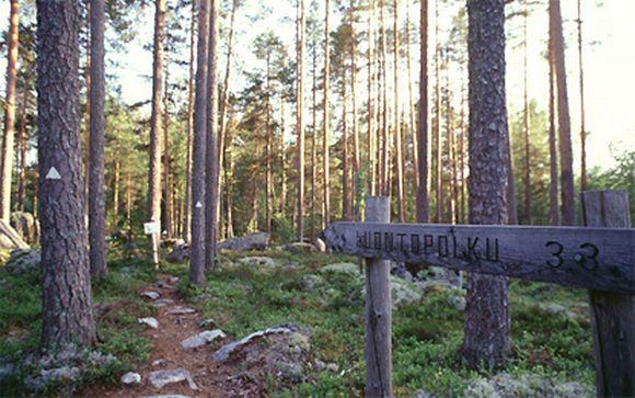 Kuva Koloveden luontopolulta Etelä-Savossa.