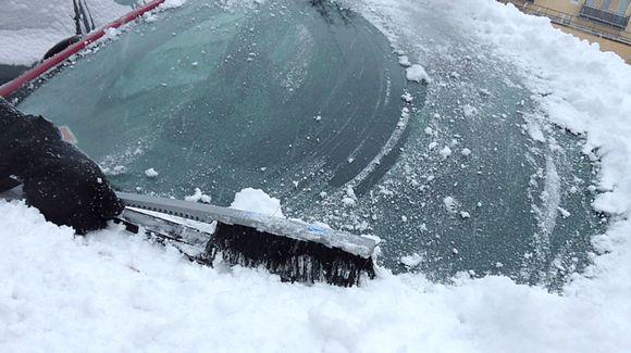 Auton etuikkunaa harjataan lumen peitosta.