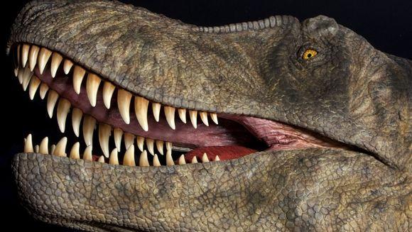 Dinoisaurus