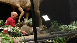 Dinosaurusnäyttelyä puretaan Oulun taidemuseolla.