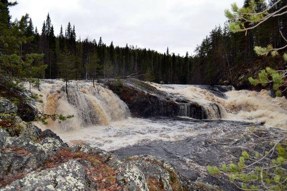 Vesi vaahtoaa Kiutakönkäällä.