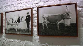 Osa Maaseudun Tulevaisuus -lehden näyttelystä Sata vuotta, sata kuvaa Pohjoisessa valokuvakeskuksessa Oulussa.